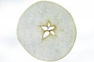 Radialschnitt - Apfelscheibe