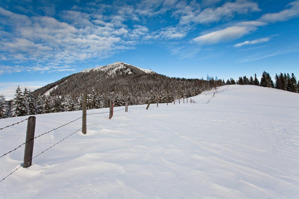 Schneeschuhtour am Salzstiegl - Foto: Thomas Burchhart