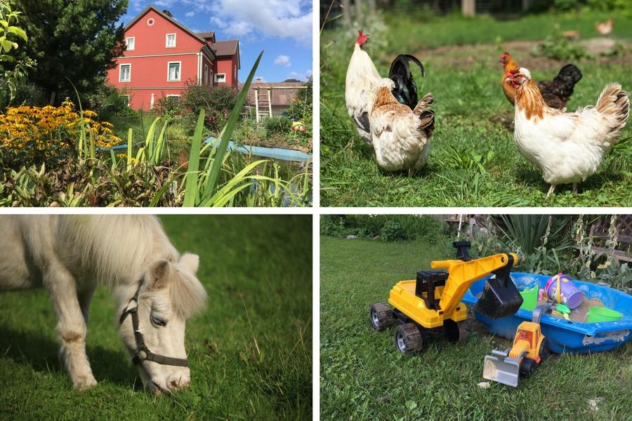 links oben Haus, Biotop und Garten, rechts oben Hühner, links unten Ponystute Fanny, rechts unten Sandspielzeug für unsere kleinen Gäste - Fotos: Pia & Thomas Burchhart