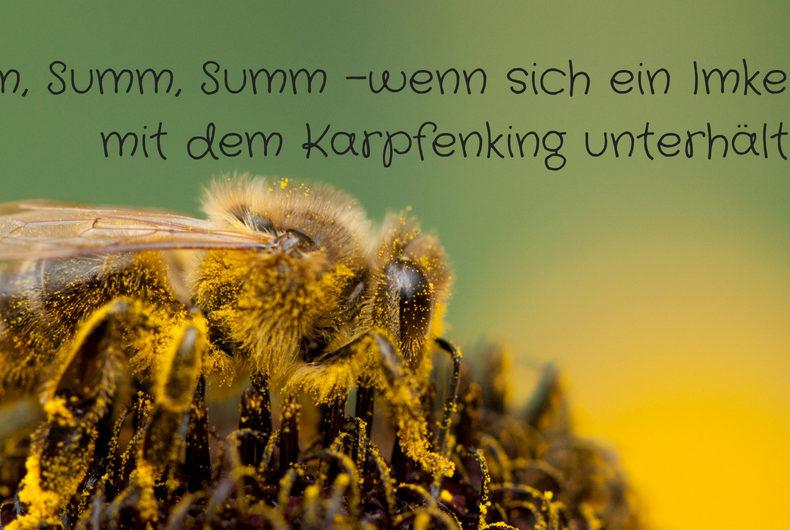 Summ, summ, summ - wenn sich ein Imkermeister mit dem Karpfenking unterhält - Foto: Thomas Burchhart