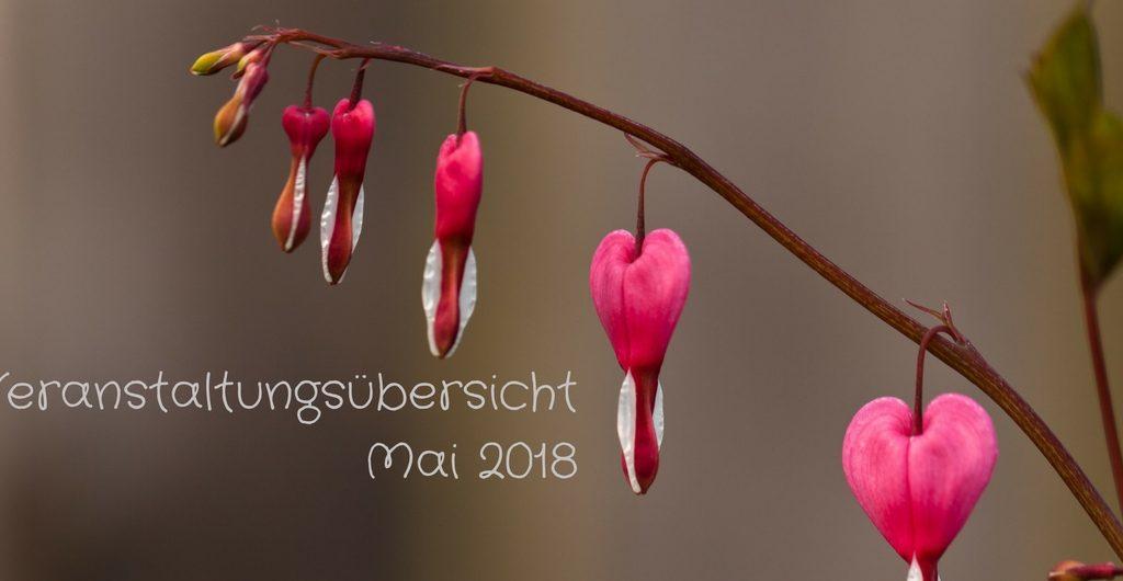 Veranstaltungsübersicht Mai 2018 - Foto: Thomas Burchhart