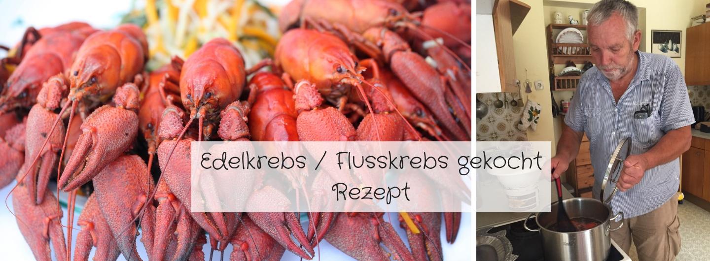 Edelkrebs Flusskrebs gekocht - ein Rezept von Luis - Fotos: Familie Wascher / Waldhaus