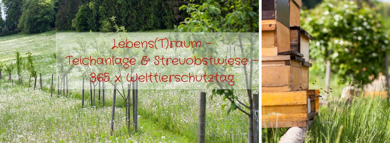 Lebens(T)raum - Teichanlage & Streuobstwiese - 365 x Welttierschutztag
