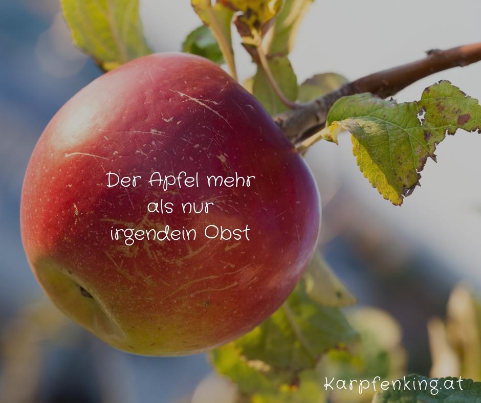 Der Apfel mehr als nur irgendein Obst - Foto (c) Familie Wascher