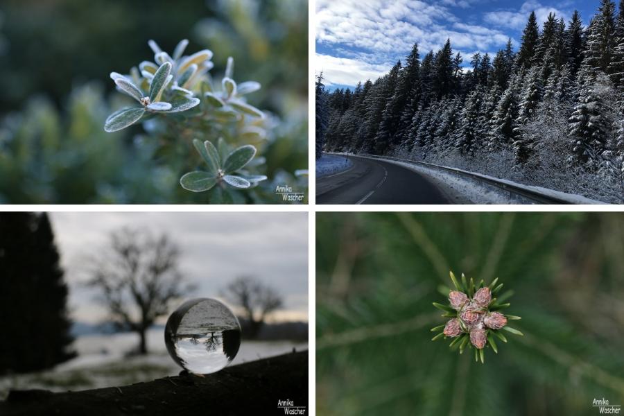 Winterstimmung - Fotos (c) Annika Wascher