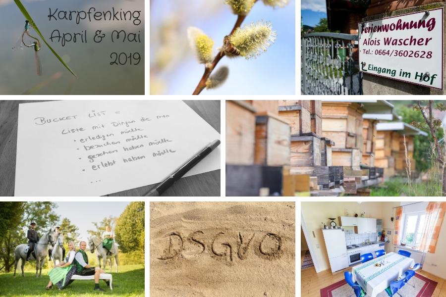 Rückblick - April und Mai 2018 - Naturerlebnis, Bienen, unsere Ferienwohnungen, Ausflugsziele in der Lipizzanerheimat, Lipizzanerdirndl ...