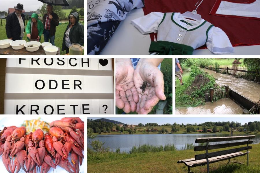 Rückblick August & September 2018 -  Regenwetter, Lipizzanerdirndl, Frosch oder Kröte???