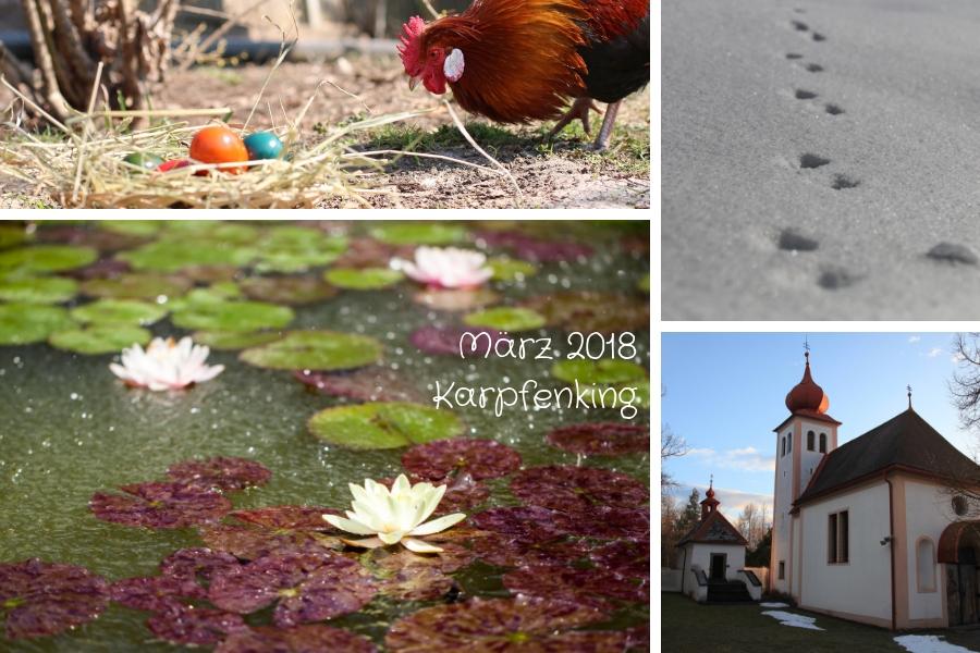 Rückblick März 2018 - Wasser - Tierspuren im Schnee - Ostern ...