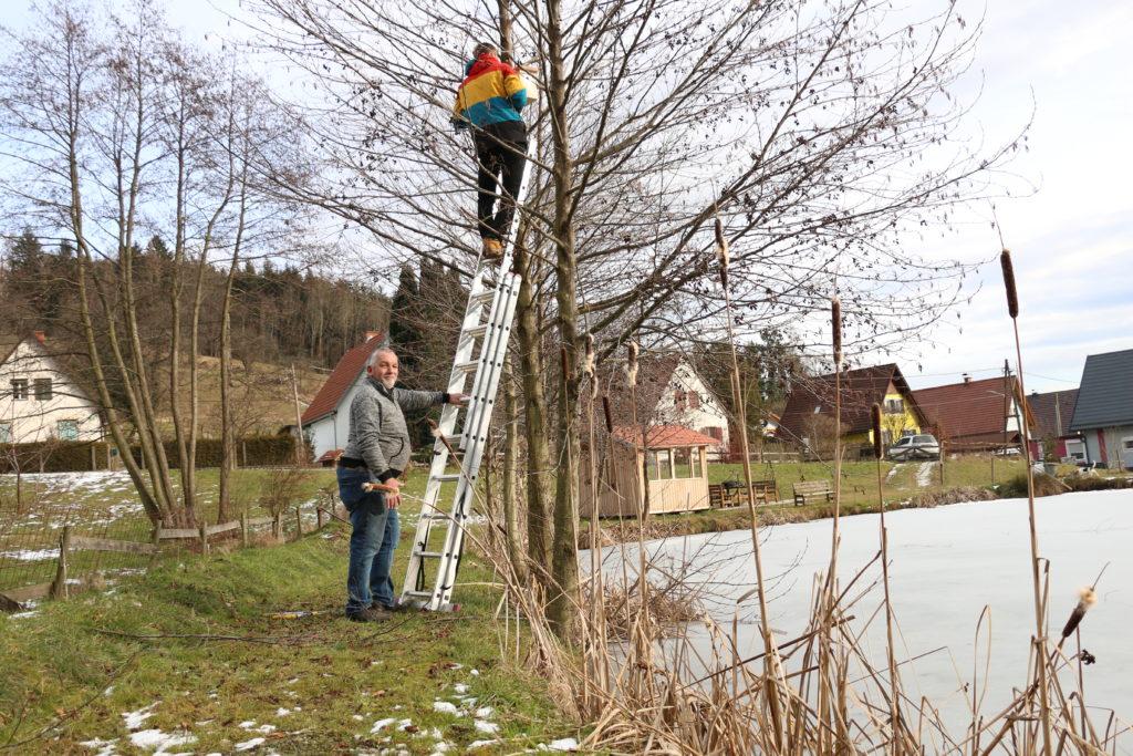 Neuer Nistkasten bei Teichanlage - Foto Annika Wascher
