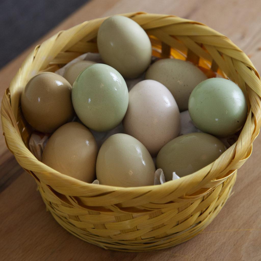 Hanna's natürlich gefärbte NATUR-Oster-Eier