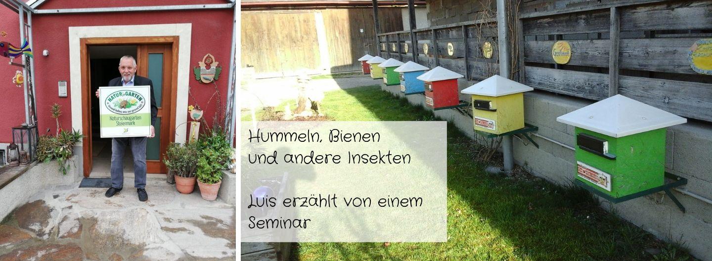 Hummelhäuser-Seminar-Luis