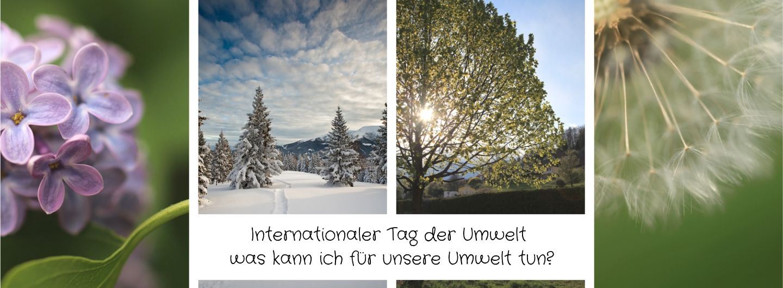 Internationaler Tag der Umwelt - Weltumweltschutztag - was kann ich für unsere Umwelt tun