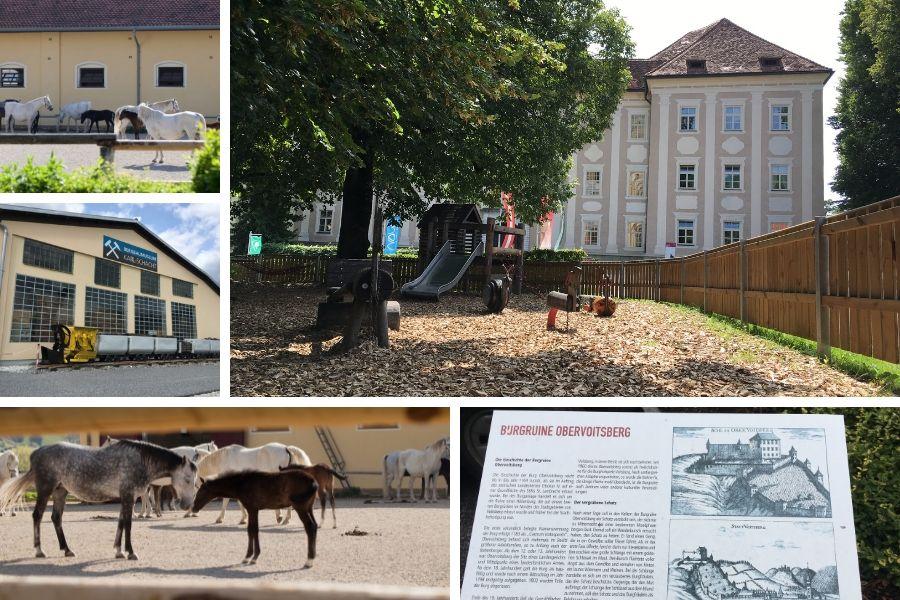 Bundesgestüt Piber, Bergbau und Burgruinen - schöne Ausflugsziele für einen Urlaubstag in der Lipizzanerheimat