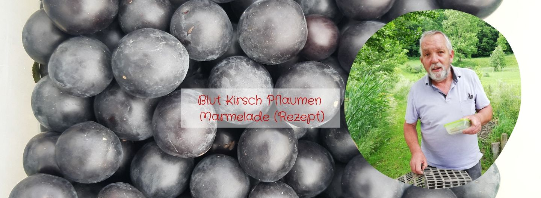 Blut-Kirsch-Pflaumen-Marmelade