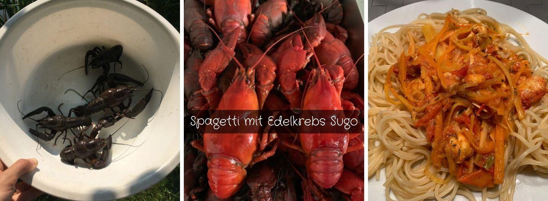 Spagetti mit Edelkrebs Sugo