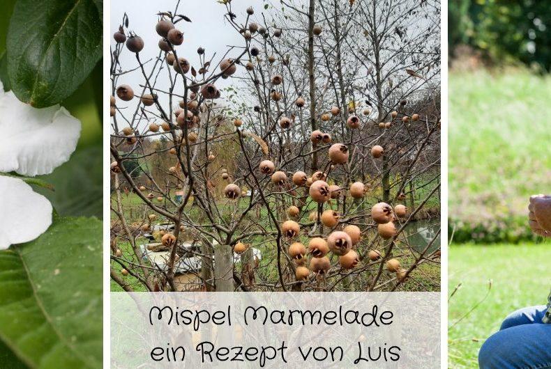 Mispel Marmelade ein Rezept von Luis (Karpfenking)