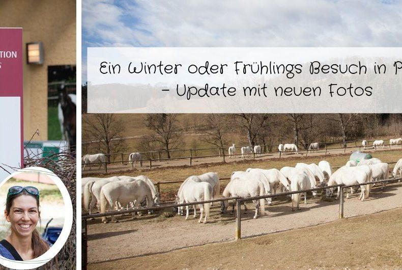 Ein Winter oder Frühlings Besuch im Bundesgestüt Piber - Update mit vielen Fotos